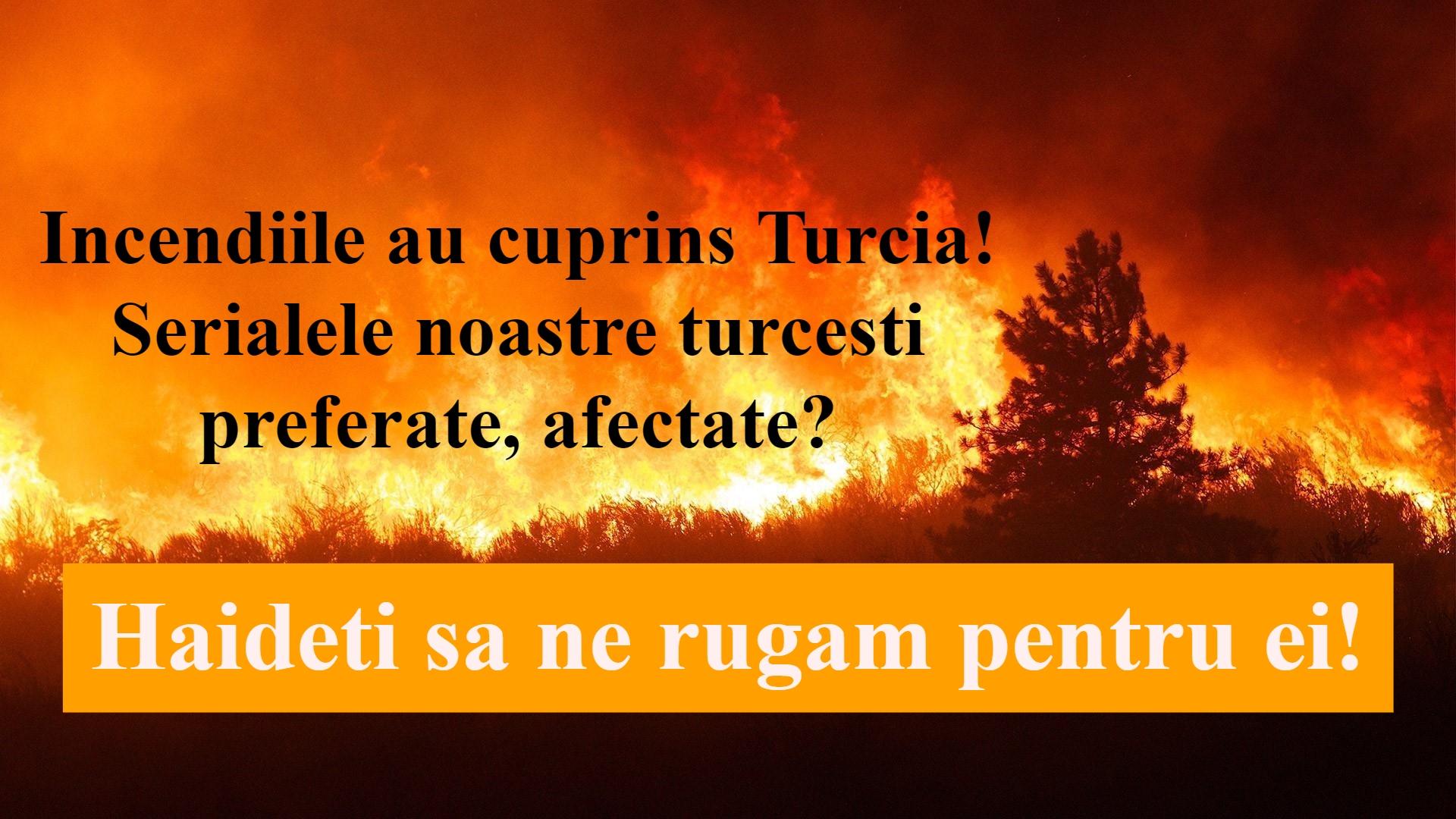 Incendiile au cuprins Turcia
